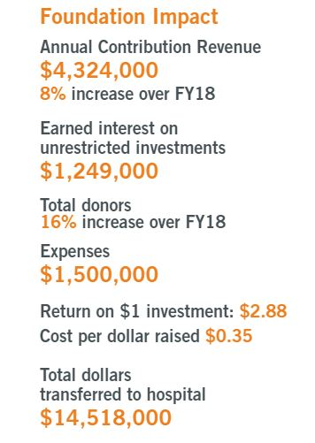 fy18-19 financials